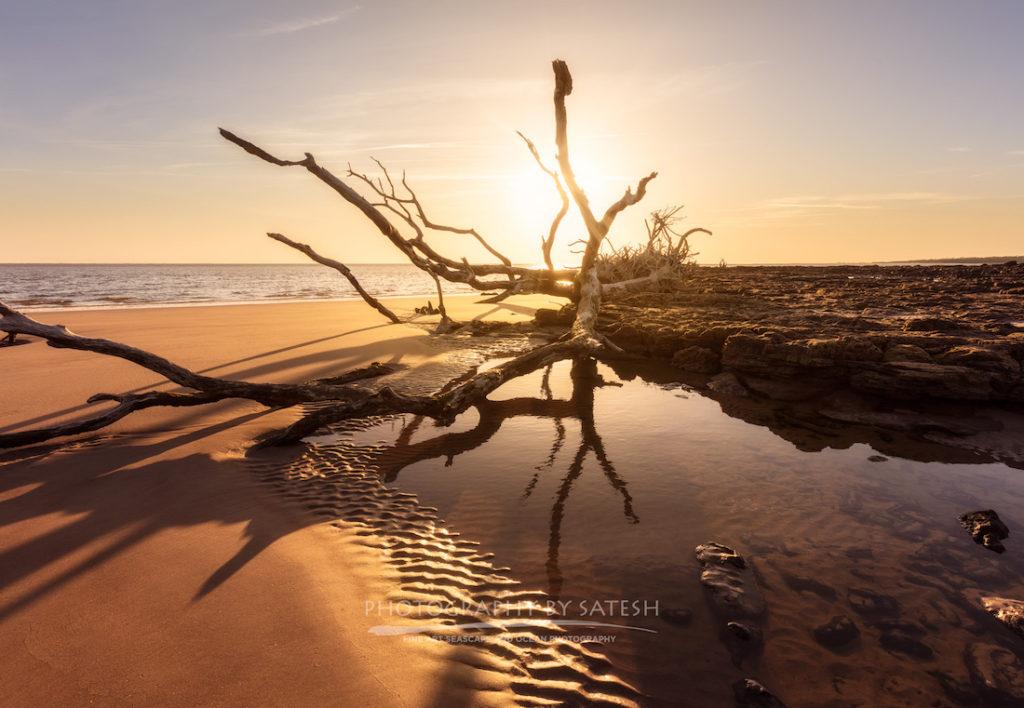 Big Talbot Island State Park Black Rock Beach