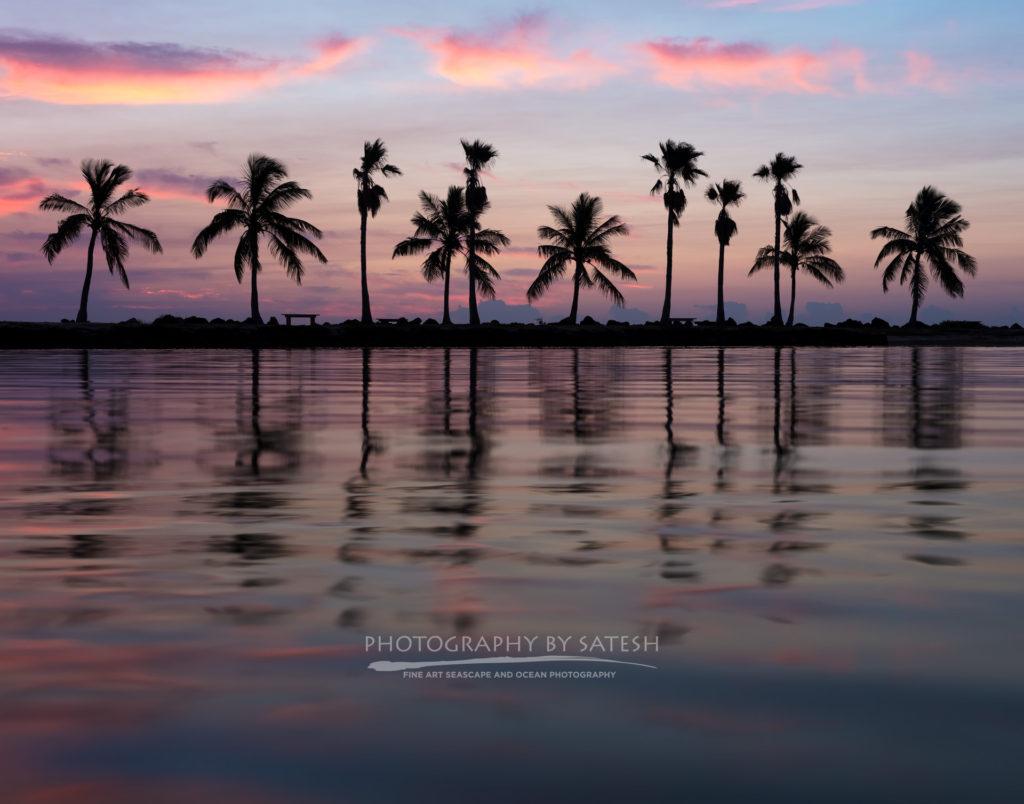 Florida landscape photography Matheson Hammock Park