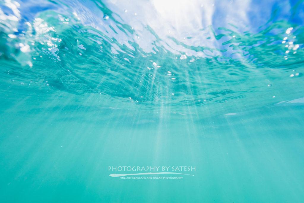 Florida underwater photography
