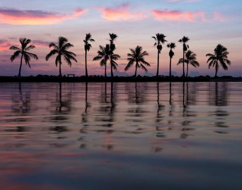 Florida Seascapes