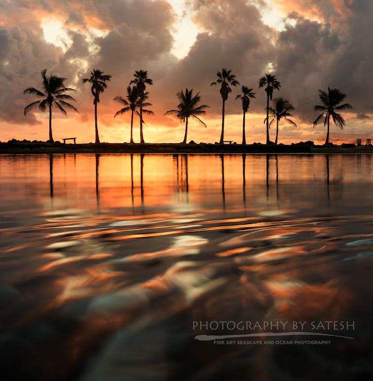 Matheson Hammock park at sunrise Florida landscape photography