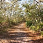 Black Rock Trail