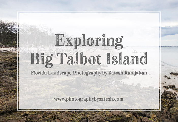 Big Talbot Island Photography