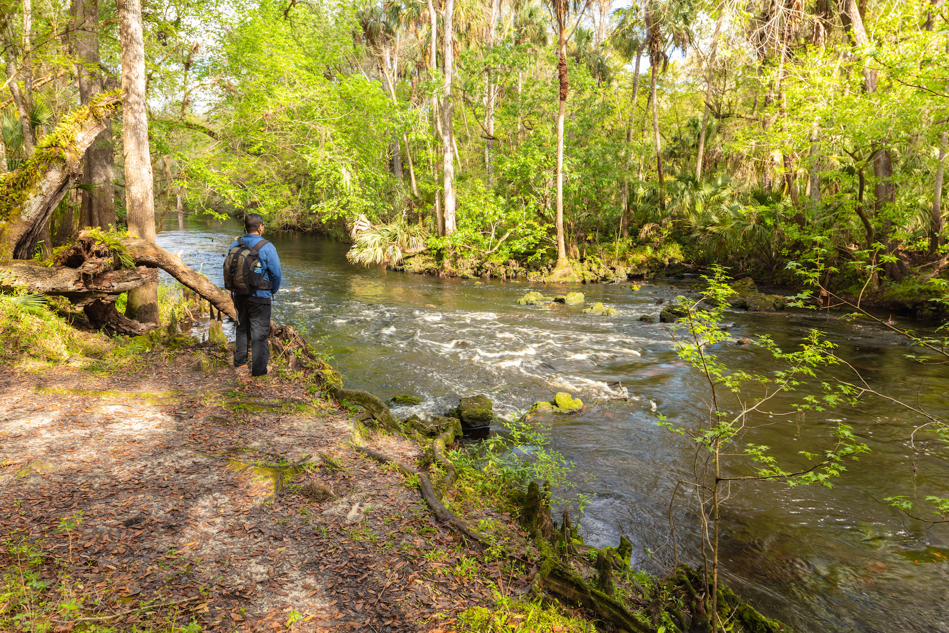 Florida landscape photographers