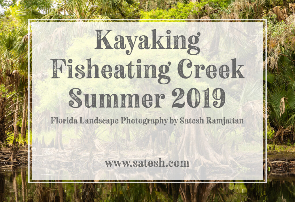Kayaking Fisheating Creek